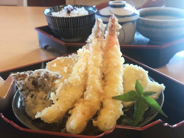 天ぷら楓のえび天御膳